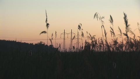 sunset power line 7 Stock Video Footage