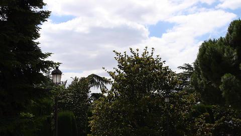 Jardines De Sabatini 05 Madrid Stock Video Footage