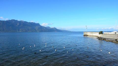 Geneva Lake, Switzerland stock footage