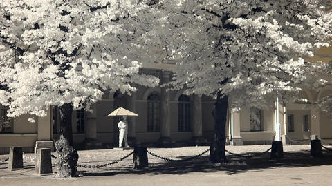 Infrared Finland: guard of honour near Finnish President headquarters 1 画像