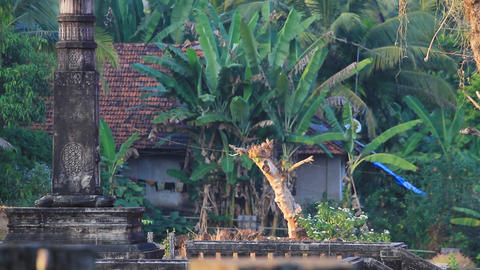 old town in the jungle Stock Video Footage