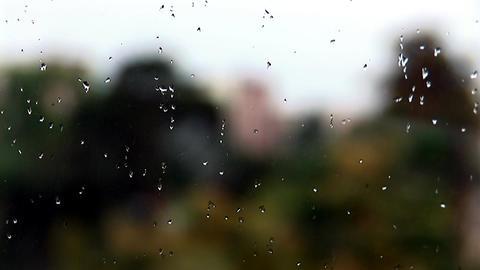 rain 1 Footage