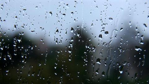 rain 4 Footage