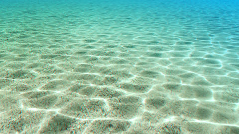 summer beach beauty Stock Video Footage