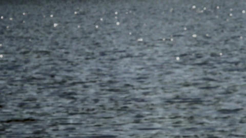 Lake reflections Stock Video Footage