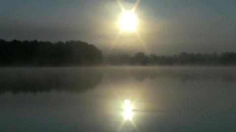 dawn Footage