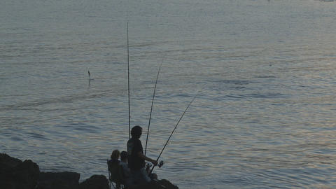 jumping fish Stock Video Footage
