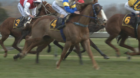 race horses captured in slow motion Footage