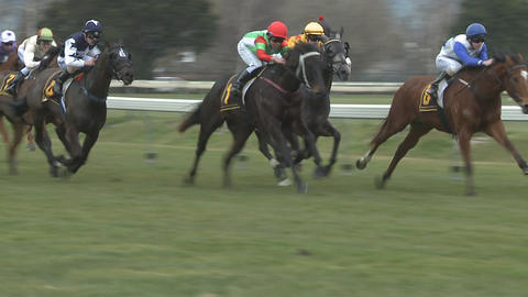 race horses in slow motion Footage