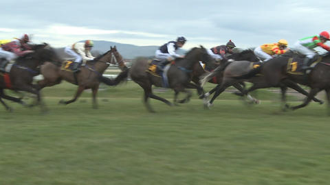 race horses in slow motion Stock Video Footage