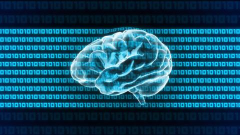 brain 1010 Stock Video Footage