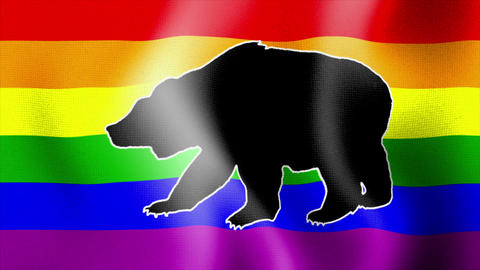waving rainbow flag with bear Stock Video Footage