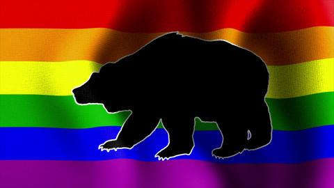 waving rainbow flag with bear CG動画
