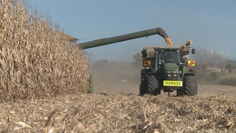 corn harvester unloads Stock Video Footage