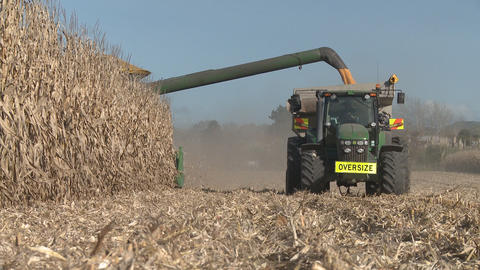 corn harvester unloads Stock Video Footage