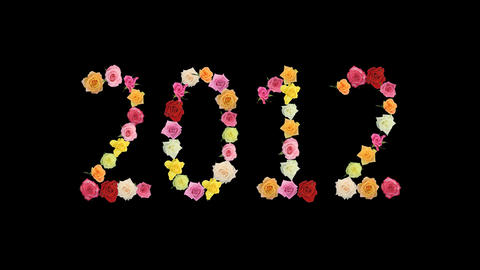 Montage opening rainbow roses year 2011-2012 switch alpha... Stock Video Footage