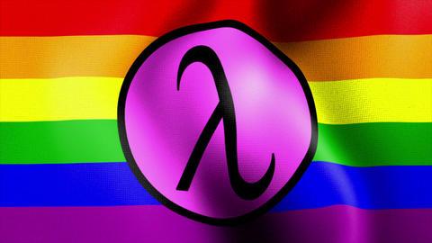 waving rainbow flag lambda sign Stock Video Footage
