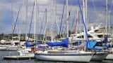 Boats And Yachts In Pula Harbor, Croatia stock footage
