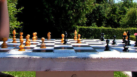 Chess Game Timelapse High Speed Park Summer Stock Video Footage