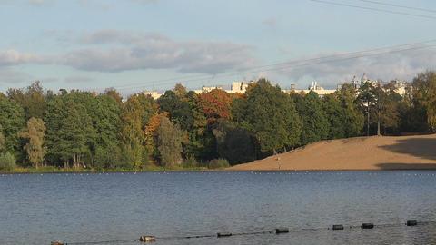 Autumn Forest. Lake. Autumn Landscape stock footage