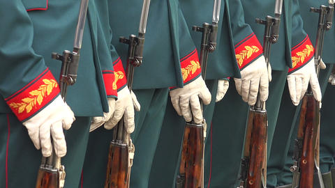 Formation Of Soldiers Honor stock footage