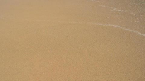 Beach Wave Footage