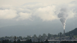 Chimney Pollution Footage