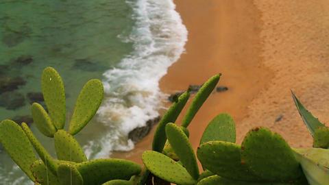 Turquoise Mediterranean beach Rack Focus 02 Footage
