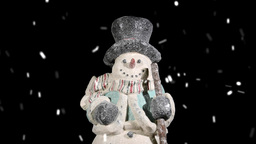 VID 209 Snowman Hd stock footage