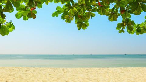 Deserted tropical beach. Sihanoukville. Cambodia Footage
