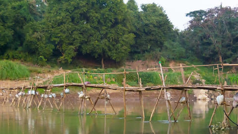 Old wooden bridge across the river. Laos. Luang Pr Footage