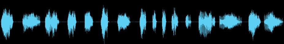 Flap Creak 音響効果