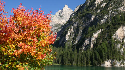 autumn at lake prags in dolomites alps 11517 Footage