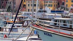 Boats and yachts in Rovinj Harbor, Croatia Stock Video Footage