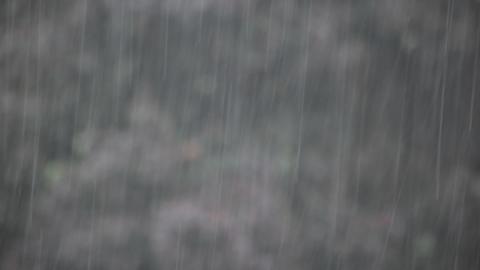 Raining Stock Video Footage