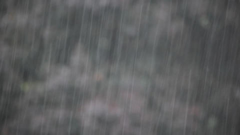 Raining Stock Video Footage