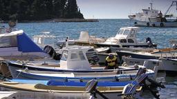 Boats in Rovinj Harbor, Croatia Footage