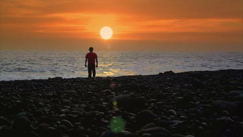 Business Man Suicide Sundown Beach stock footage