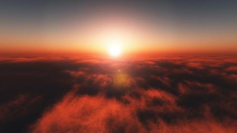 Morning Sun 0