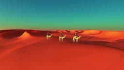 desert Stock Video Footage