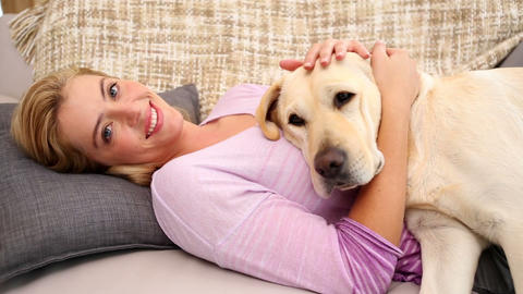 Happy Blonde Petting Labrador On Couch stock footage