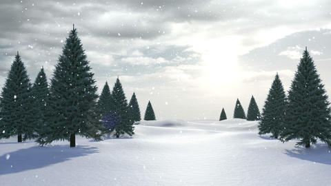 Snow falling on fir tree forest Animation