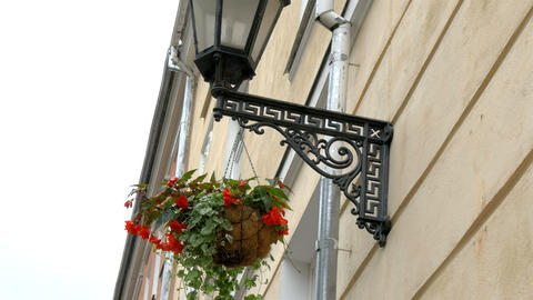 A medieval street lamp and a hanging plant at Esto Footage