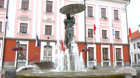 The fountain statue infront of the old city hall o Footage