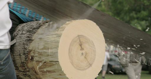 A log cutting competition with a big saw Footage