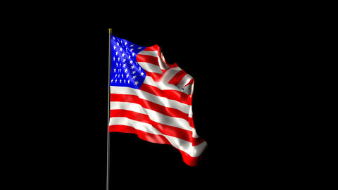 American Flag 2009 Animation