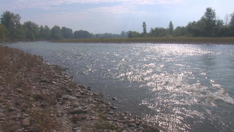 river prut 2 Stock Video Footage