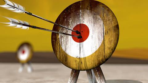 Medieval Arrow Target HD Image