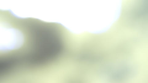 Soft white blur background Animation