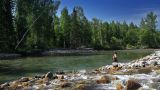 Fly Fishing 1 stock footage
